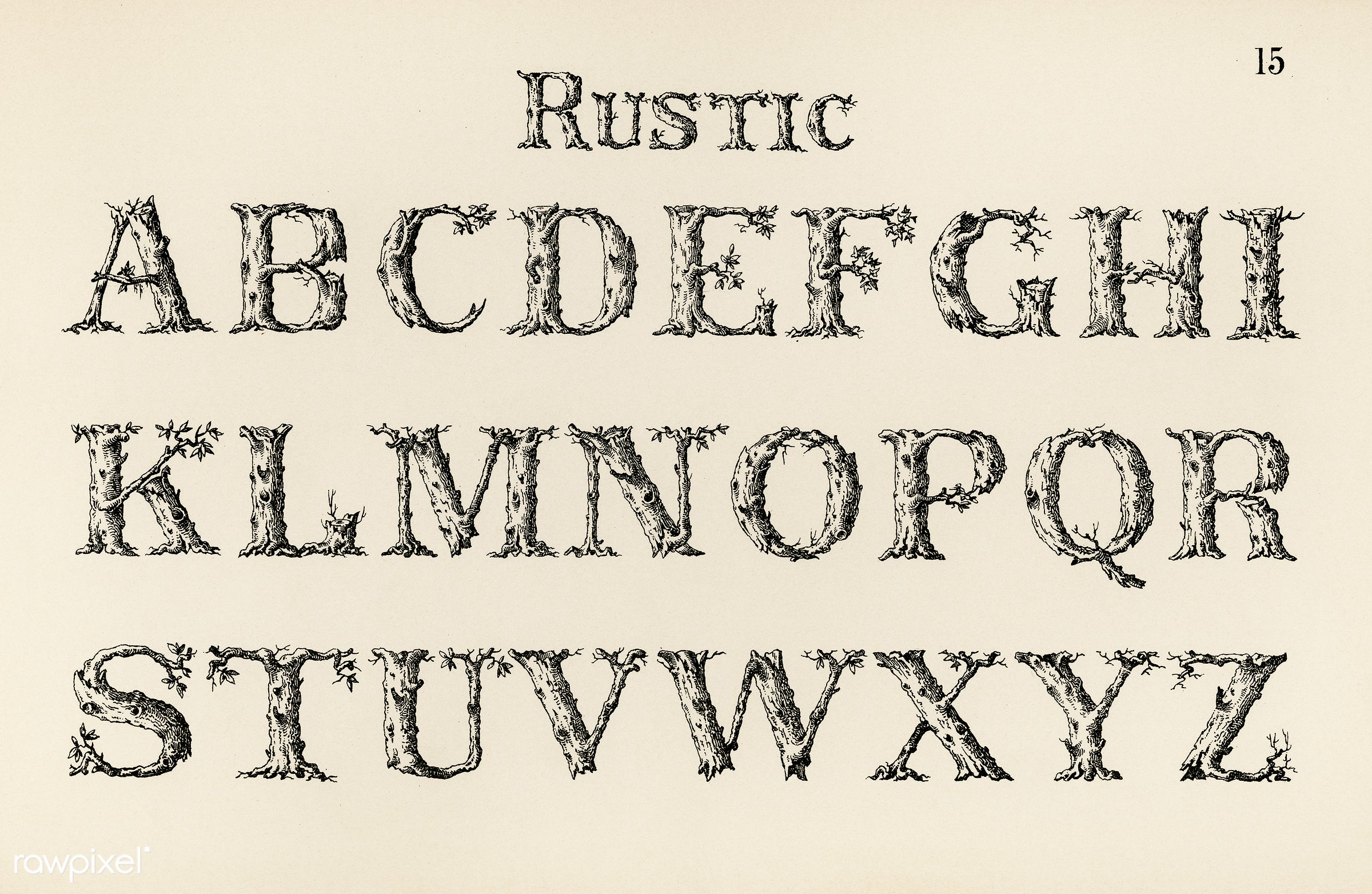 Rustic Calligraphy Fonts From Draughtsmans Alphabets By Hermann Esser 1845 1908 Digitally