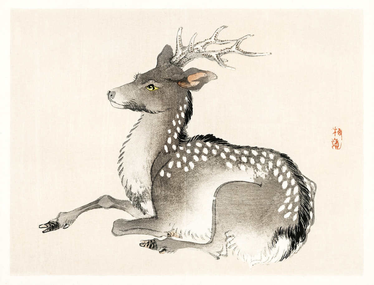 Elk by Kōno Bairei (1844-1895). Digitally enhanced from our own original 1913 edition of Barei Gakan.
