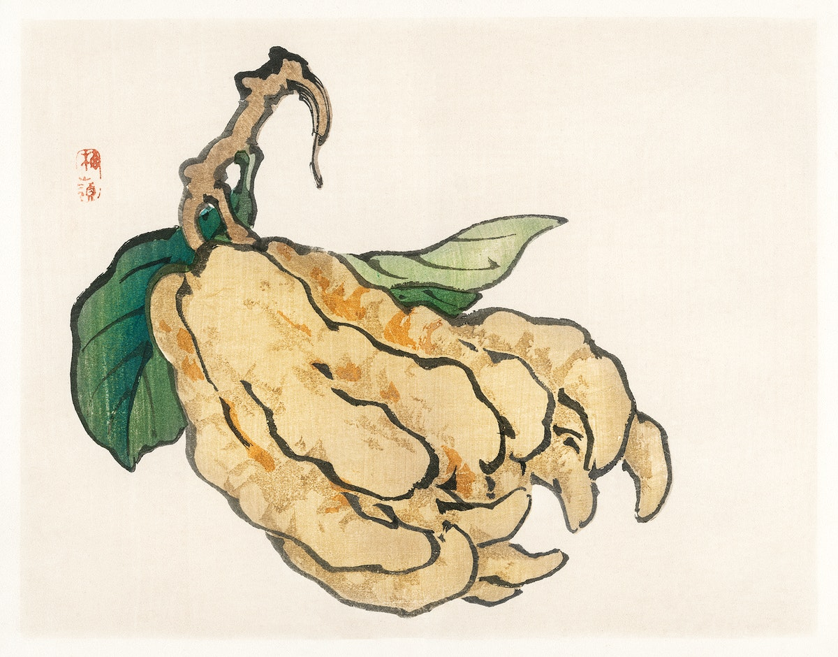 Etrog by Kōno Bairei (1844-1895). Digitally enhanced from our own original 1913 edition of Barei Gakan.