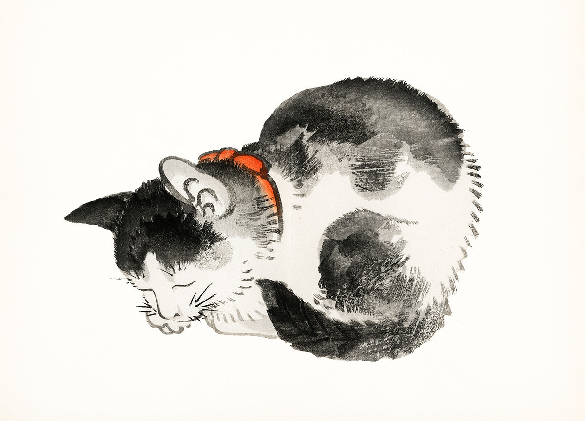 Vintage Illustration of Sleeping cat.