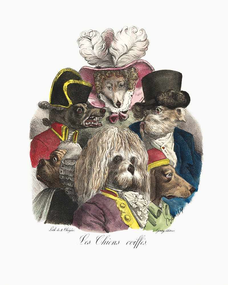 Les Chiens Coiffés (ca. 1825) lithographed by A. Cheyère. Original from The MET Museum. Digitally enhanced by…