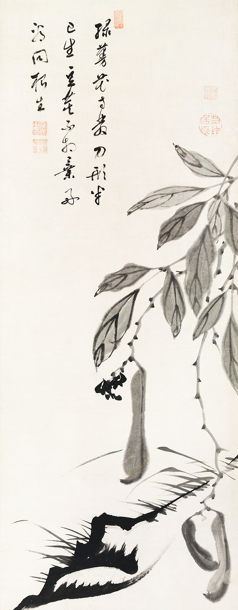 Bean Vine illustration by Ito Jakuchu (1716–1800). Original from The MET Museum. Digitally enhanced by rawpixel.