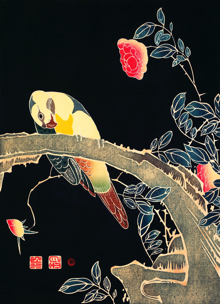 Parrot on the Branch of a Flowering Rose Bush (ca. 1900) illustration by Ito Jakuchu. Original from The MET Museum. Digitally…