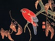"""Red Parrot on the Branch of a Tree (ca. 1900) by <a href=""""https://www.rawpixel.com/search/Ito%20Jakuchu?sort=curated&amp;page=1"""">Ito Jakuchu</a>. Original from The MET Museum. Digitally enhanced by rawpixel."""