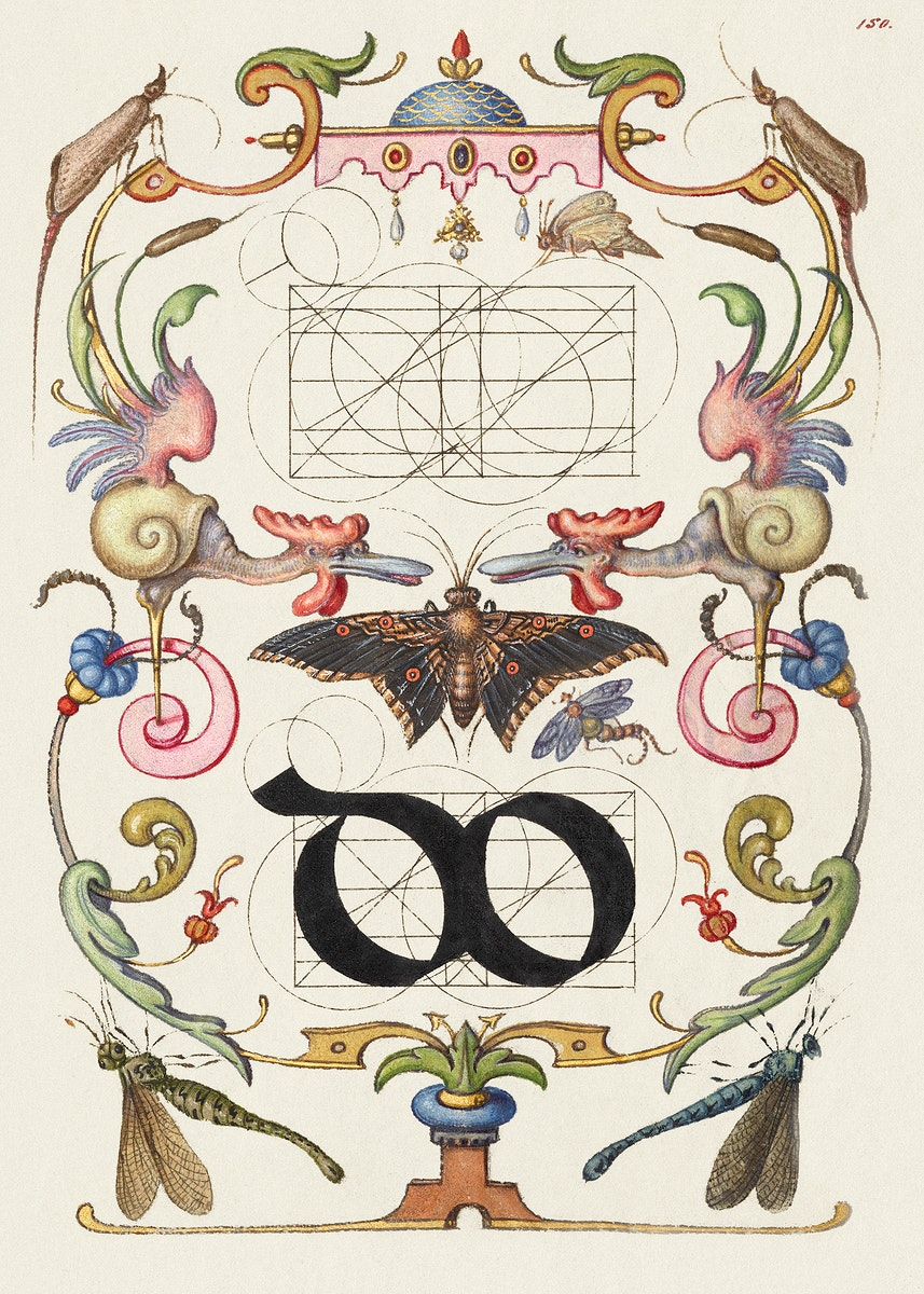Guide for Constructing the Ligature do from Mira Calligraphiae Monumenta or The Model Book of Calligraphy (1561–1596)…