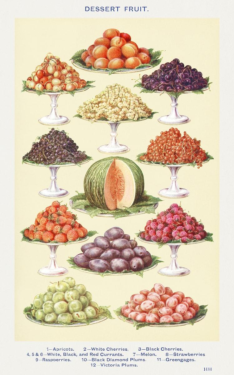 Dessert Fruit: Apricots, White Cherries, Black Cherries, White, Black and Red Currants, Melon, Strawberries, Raspberries…