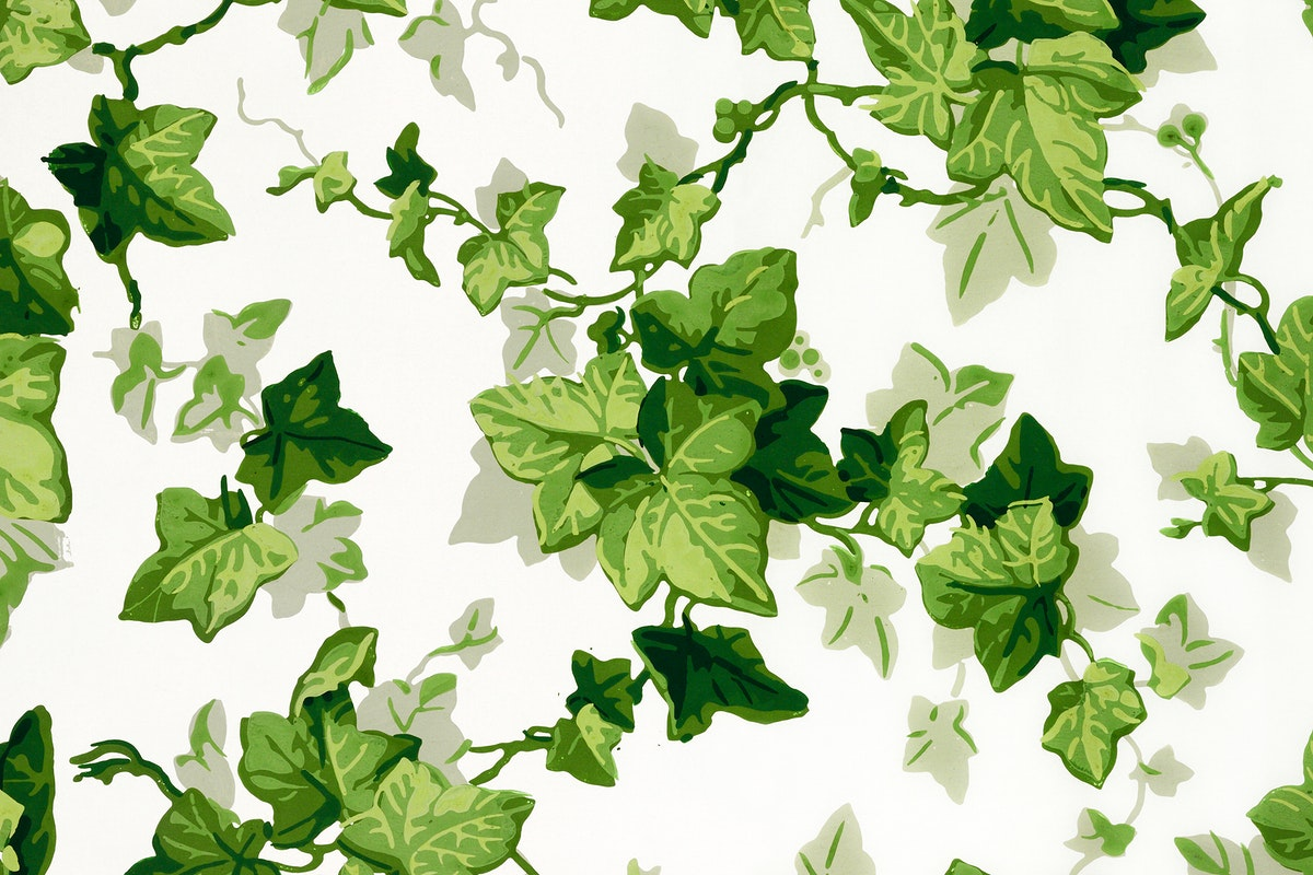 Twisting ivy leaves (1840s) pattern in high resolution. Original from The Smithsonian. Digitally enhanced by rawpixel.