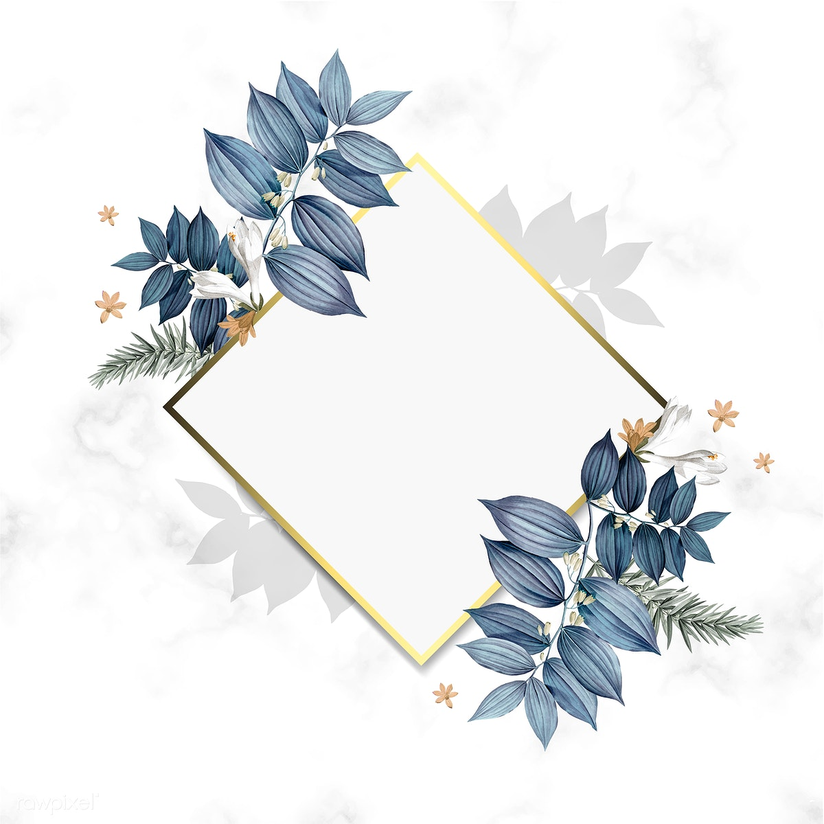 Download premium illustration of Empty floral frame design vector 520449