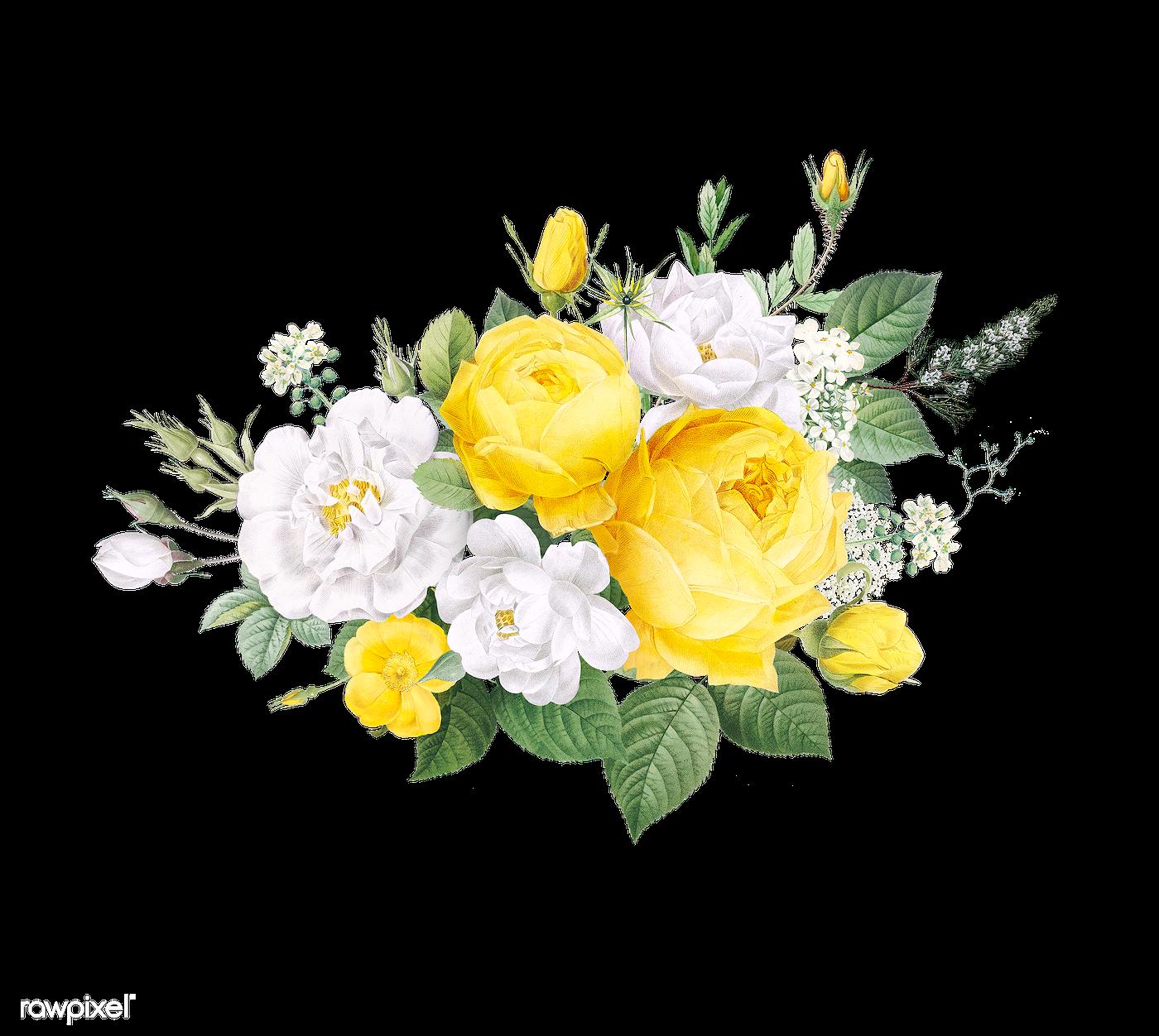Floral design background   Royalty free transparent png ...