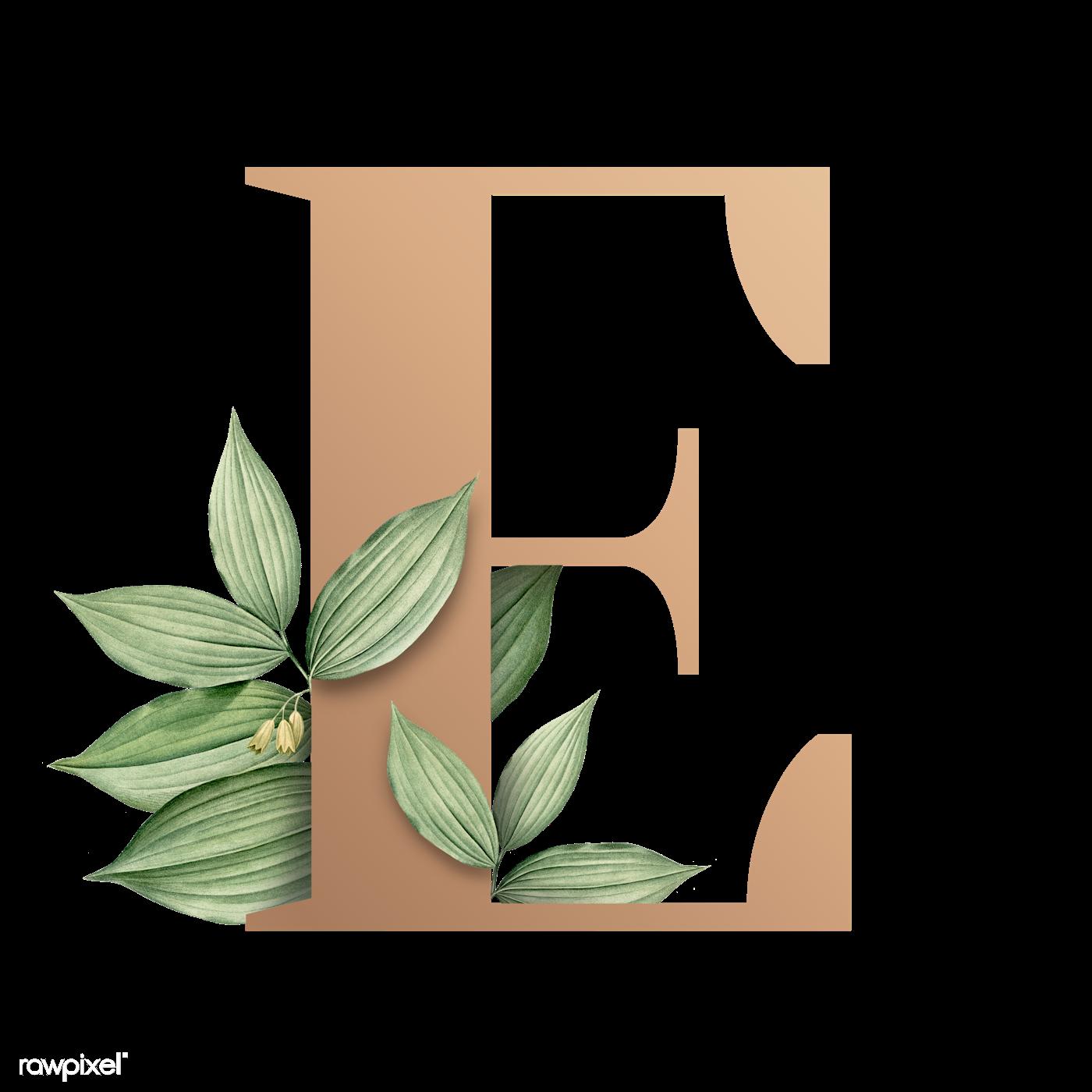 D Letter K Template on all sizes, large capital, free printable block, printable lower case, printable writing, logo design, koala craft,