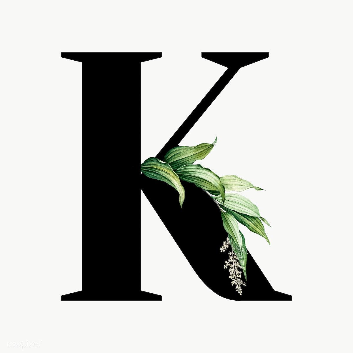 Download premium png of Botanical capital letter K transparent png 584898