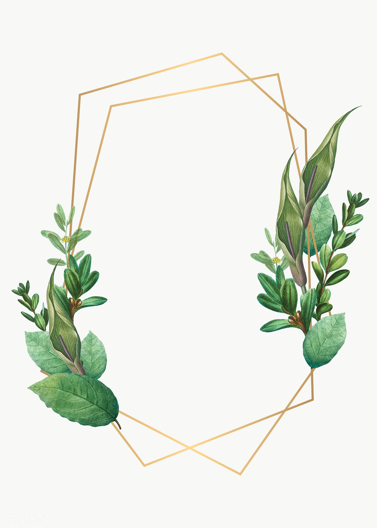 Botanical Themed Design Space Royalty Free Stock