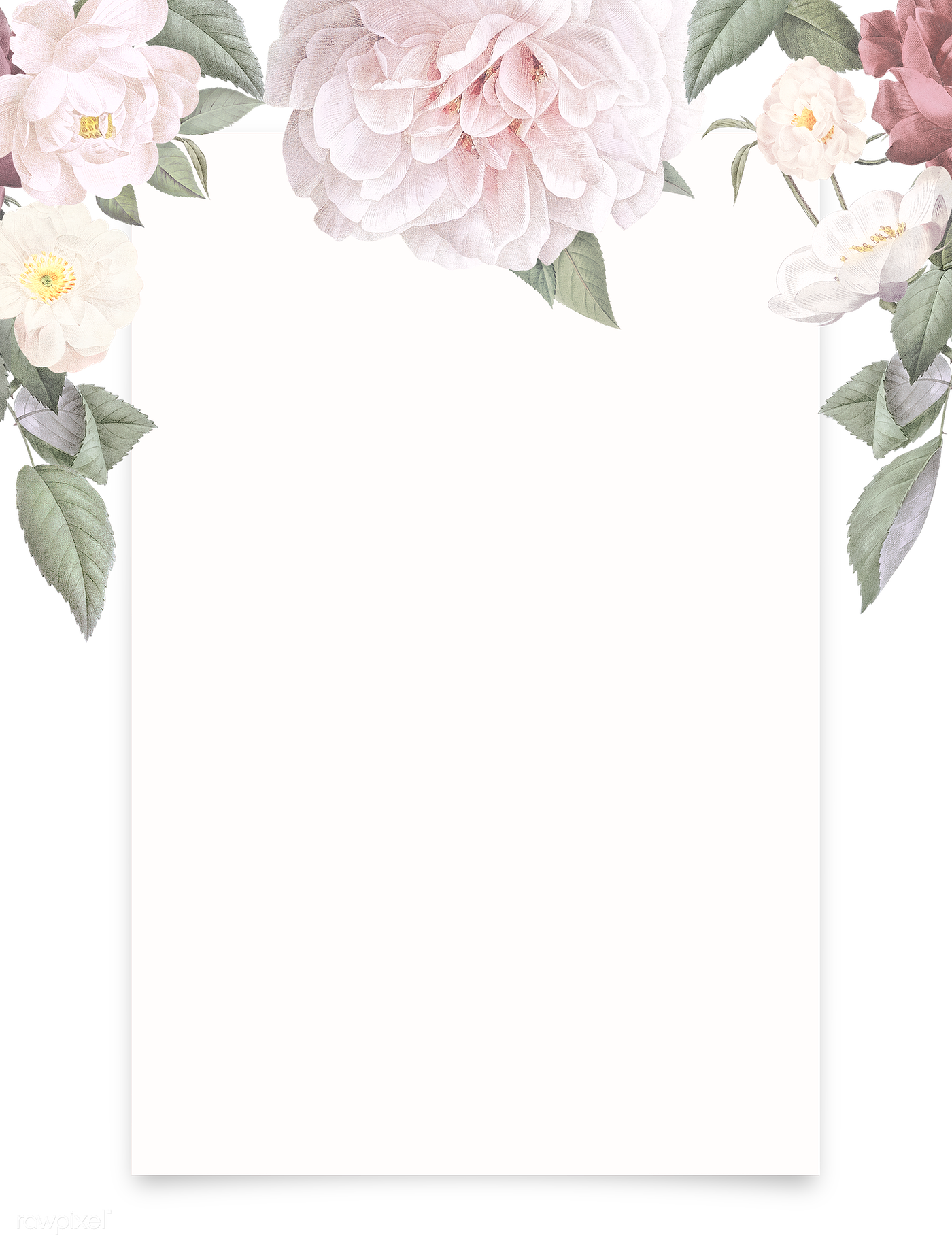 Feminine Flowers Border Royalty Free Transparent Png