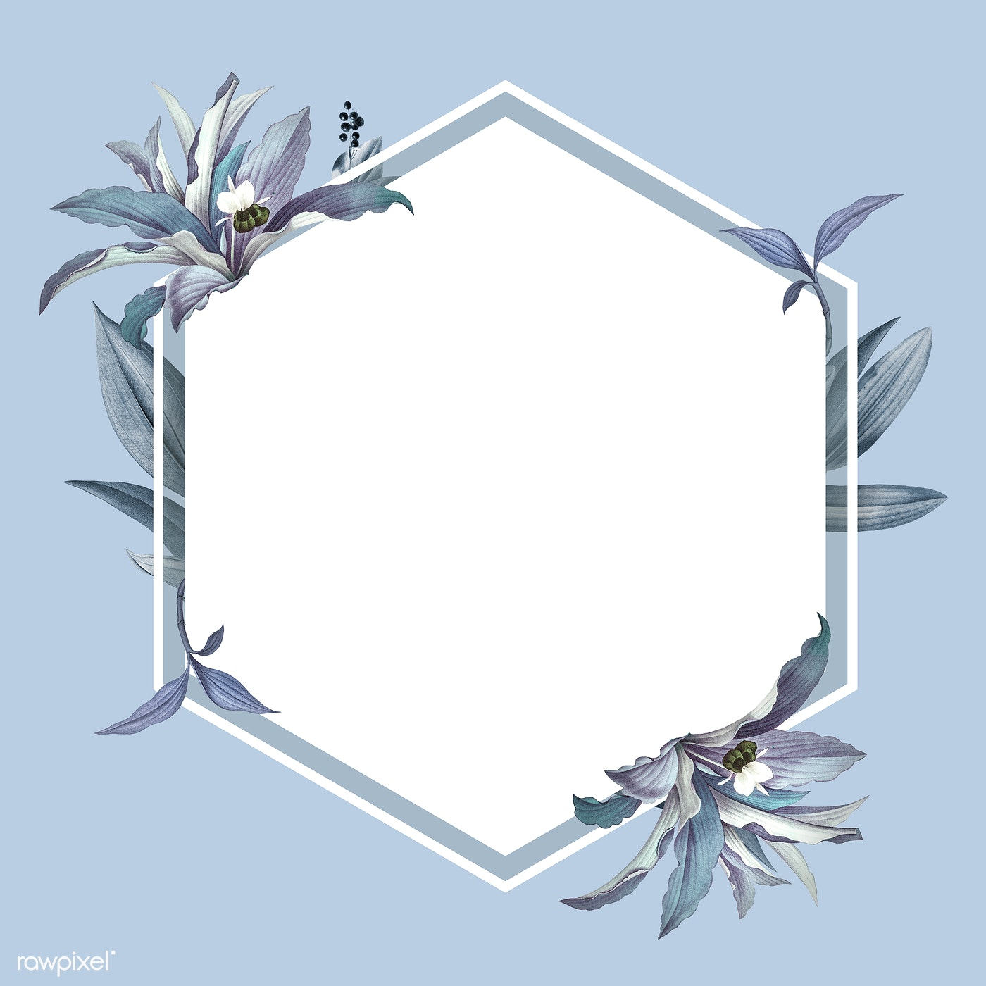 Empty Frame With Blue Leaves Design Royalty Free Stock