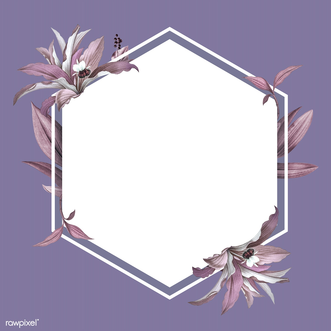 Empty Wedding Frame With Purple Leaves Design Royalty Free Stock