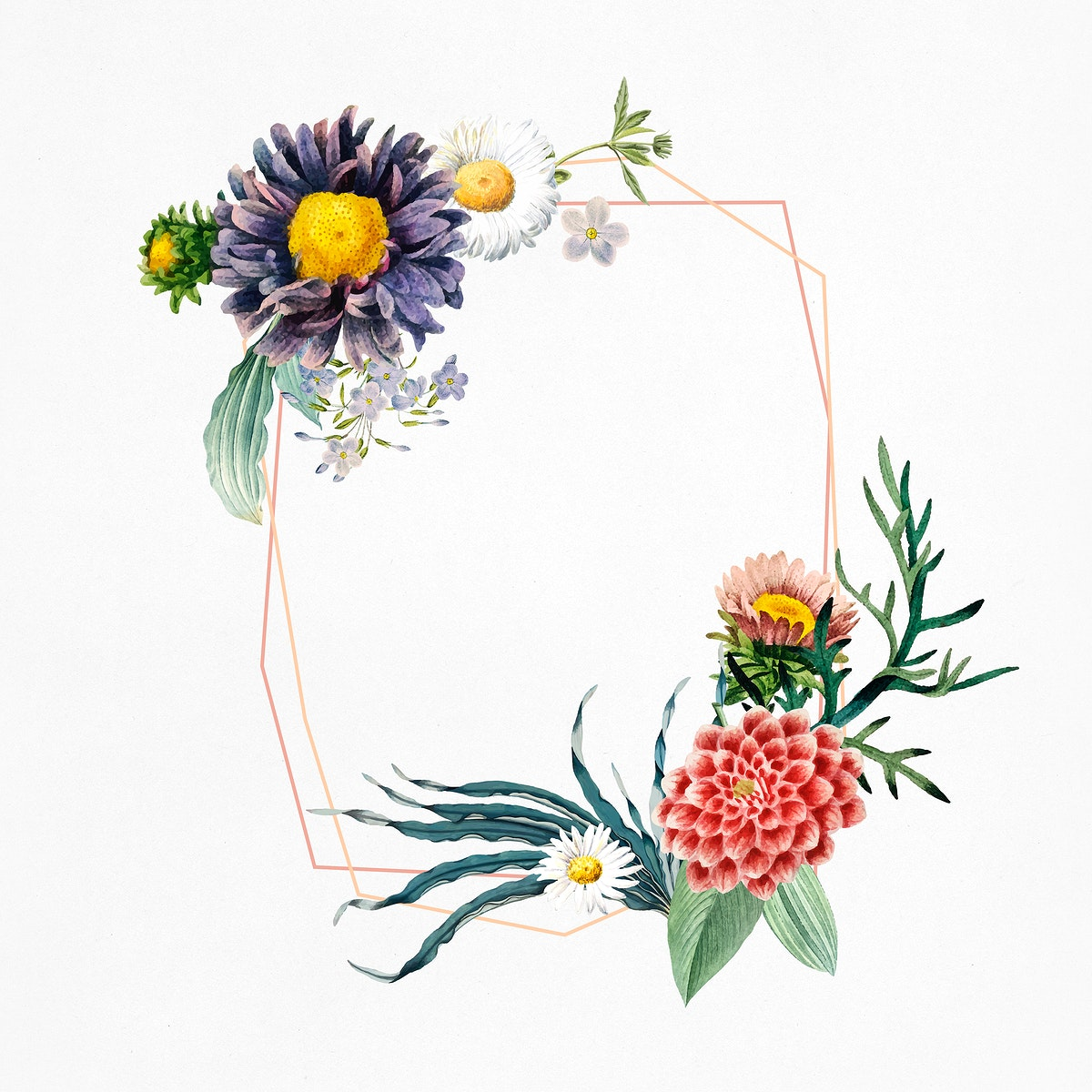 Summer flower frame psd hand drawn floral  illustrations