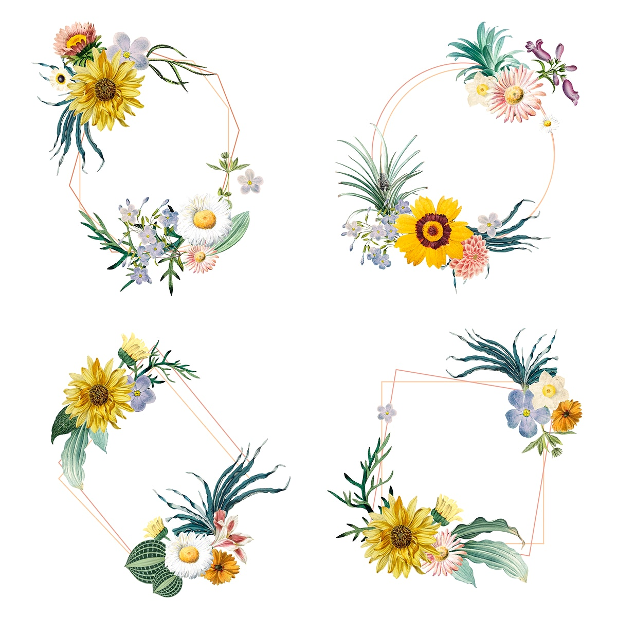 Set of frame decorated with flower vectors