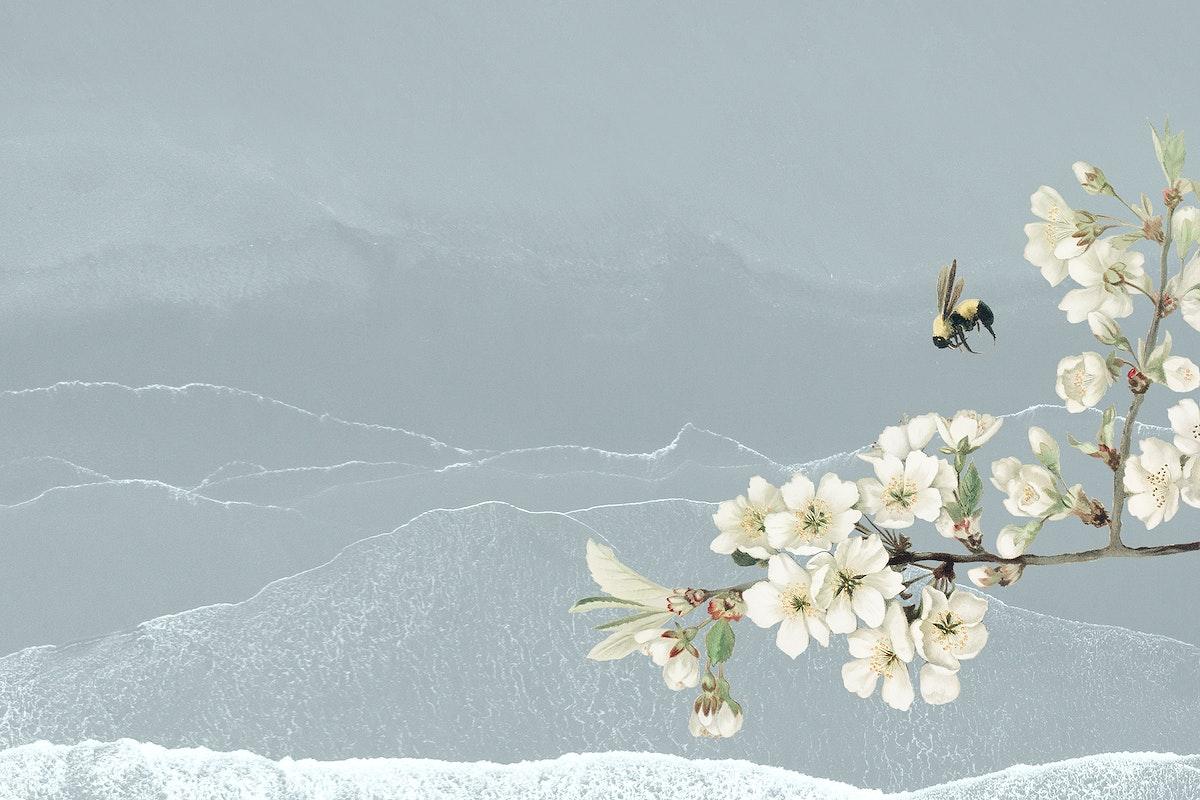 White azalea blossom flower branch bouquet border on blue background