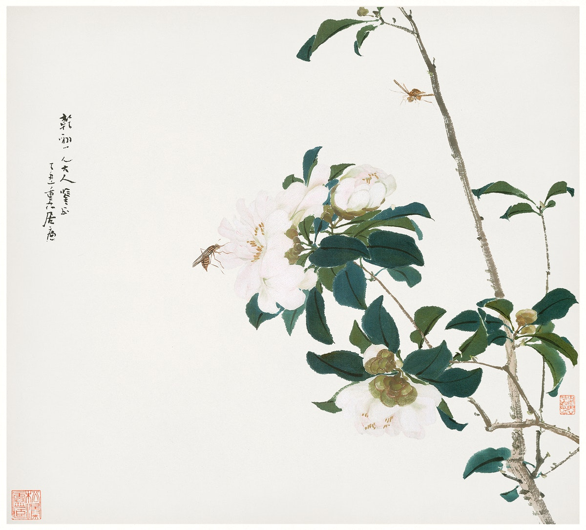 Insects and Flowers (Qing dynasty ca. 1644–1911) by Ju Lian. Original from The Getty. Digitally enhanced by rawpixel.