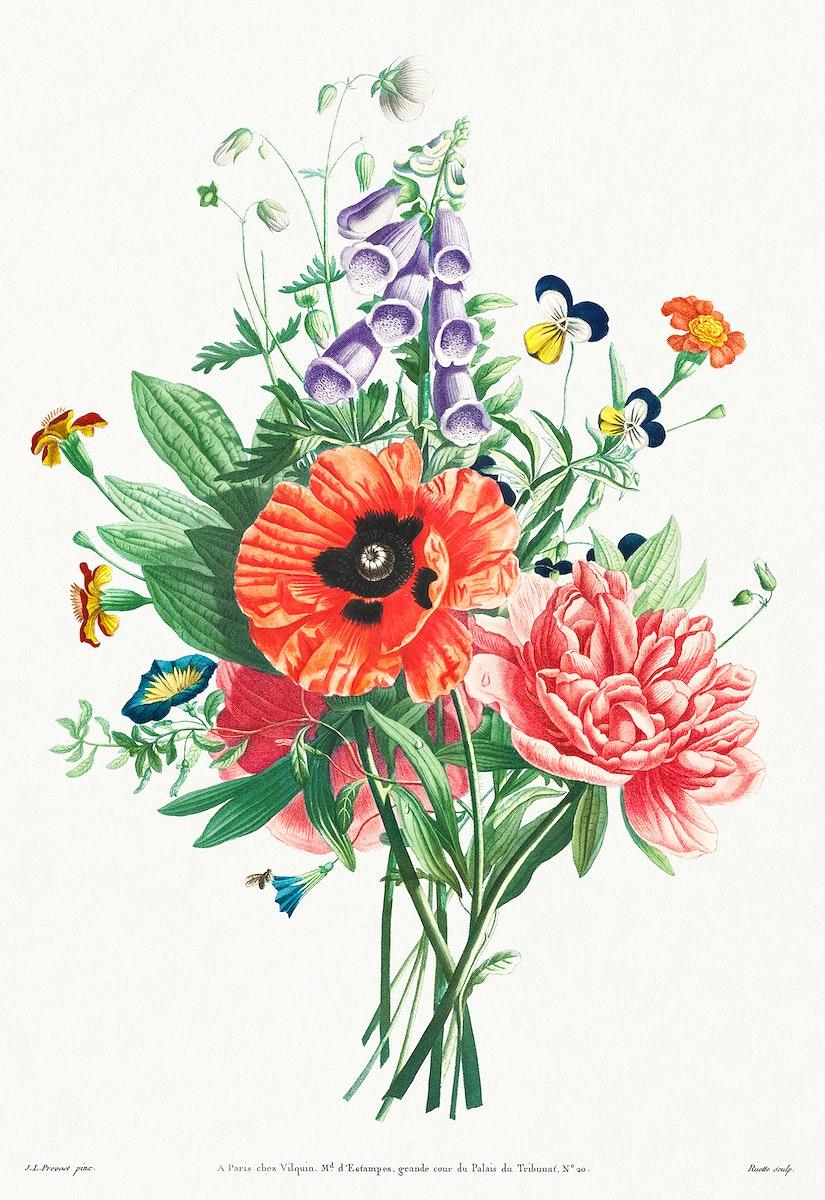 Vintage poppy, peony and foxglove bouquet illustration botanical wall art