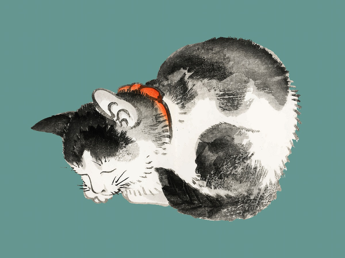 Sleeping cat by Kōno Bairei (1844-1895). Digitally enhanced from our own original 1913 edition of Bairei Gakan.