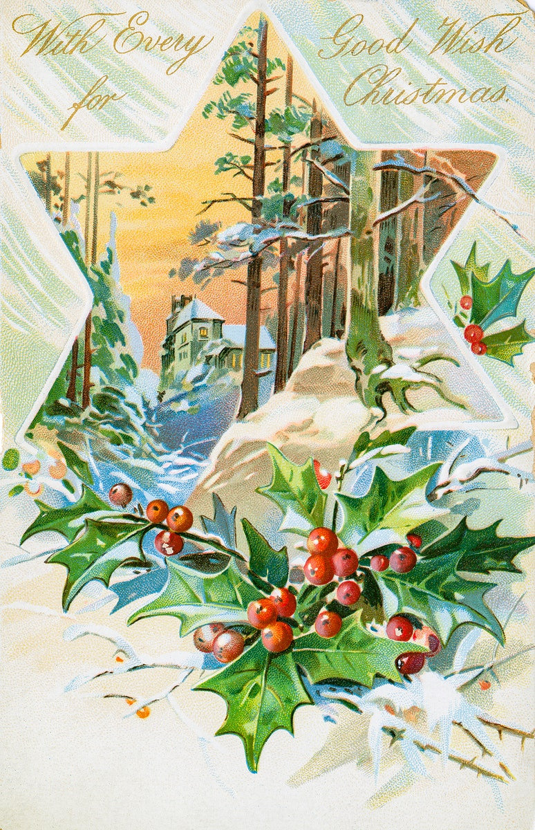 Vintage Christmas Postcard Depicting Star and Holly from The Miriam and Ira D. Wallach Division of Art, Prints and…