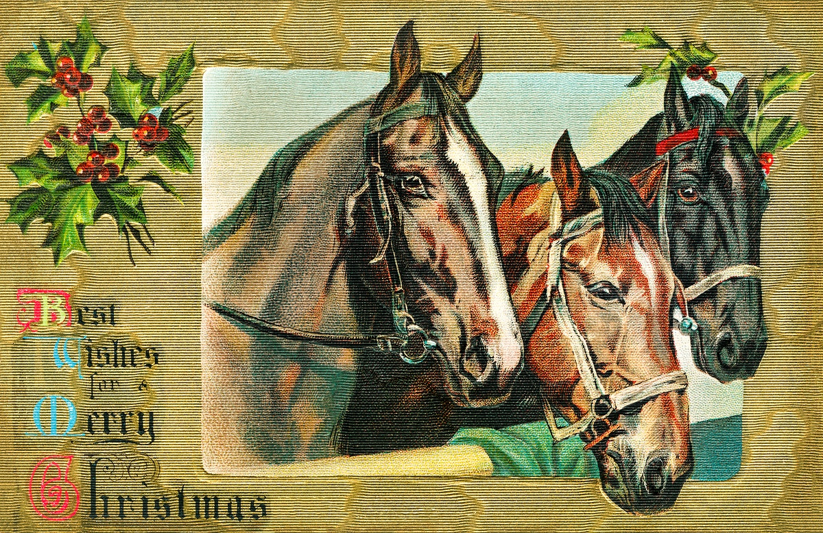 Best Wishes for a Merry Christmas (1908) from The Miriam and Ira D. Wallach Division of Art, Prints and Photographs. Original…
