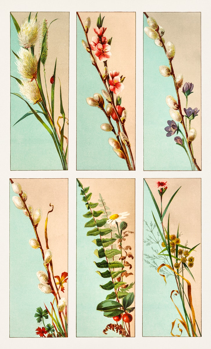 Christmas Card Depicting Plant Life (1865–1899) by L. Prang & Co. Original from The New York Public Library. Digitally…