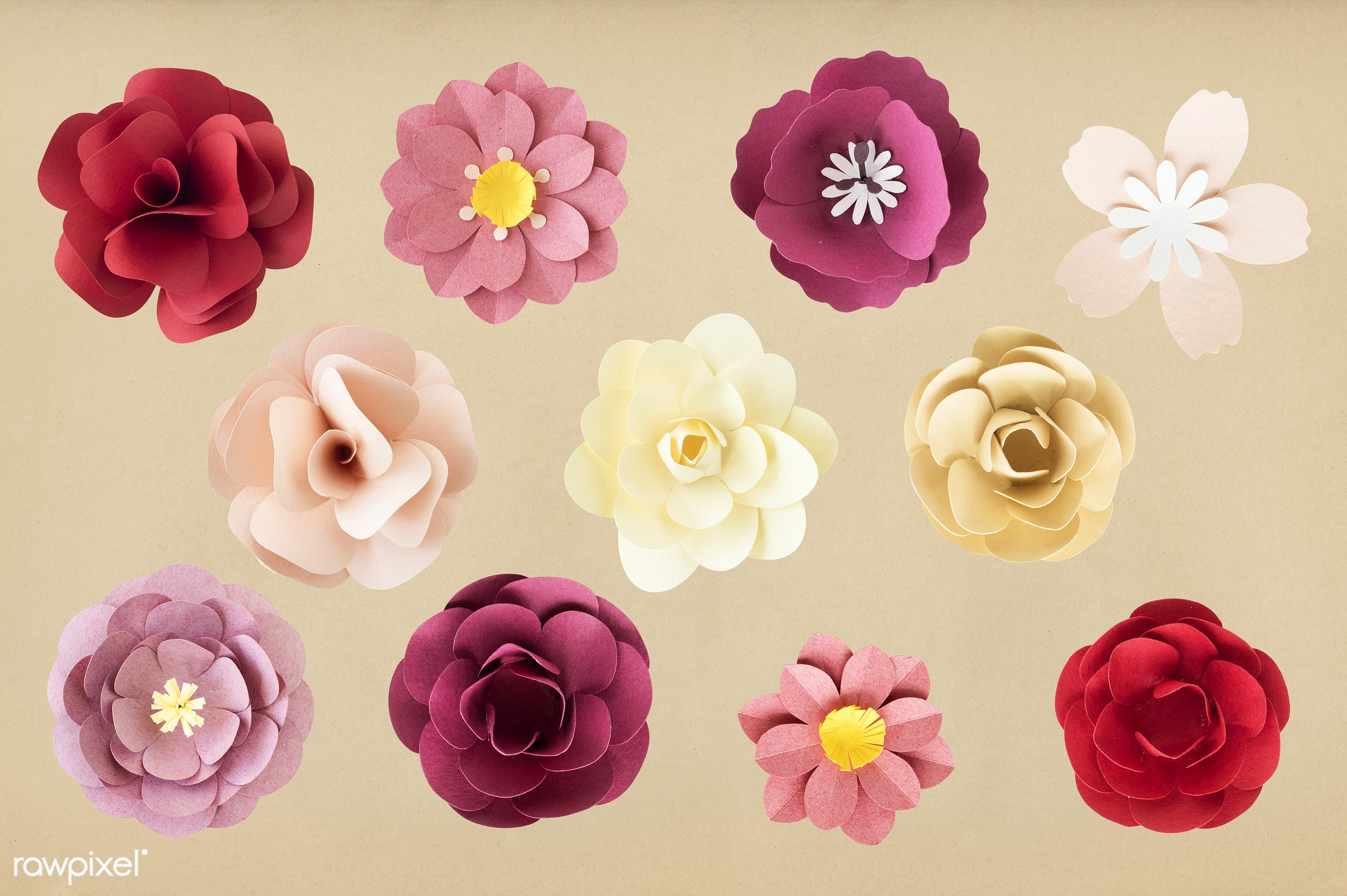 Set Of Flowers Made Out Of Paper Id 261601
