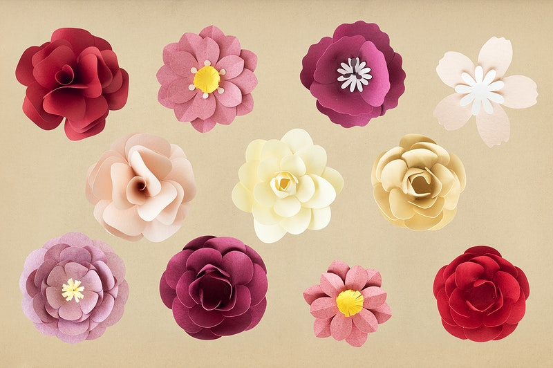 Paper craft flowers set of flowers made out of paper background carnation cut out daisy mightylinksfo