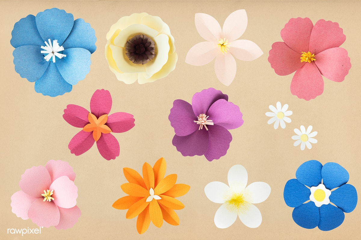 Set Of Flowers Made Out Of Paper Royalty Free Stock Psd Mockup