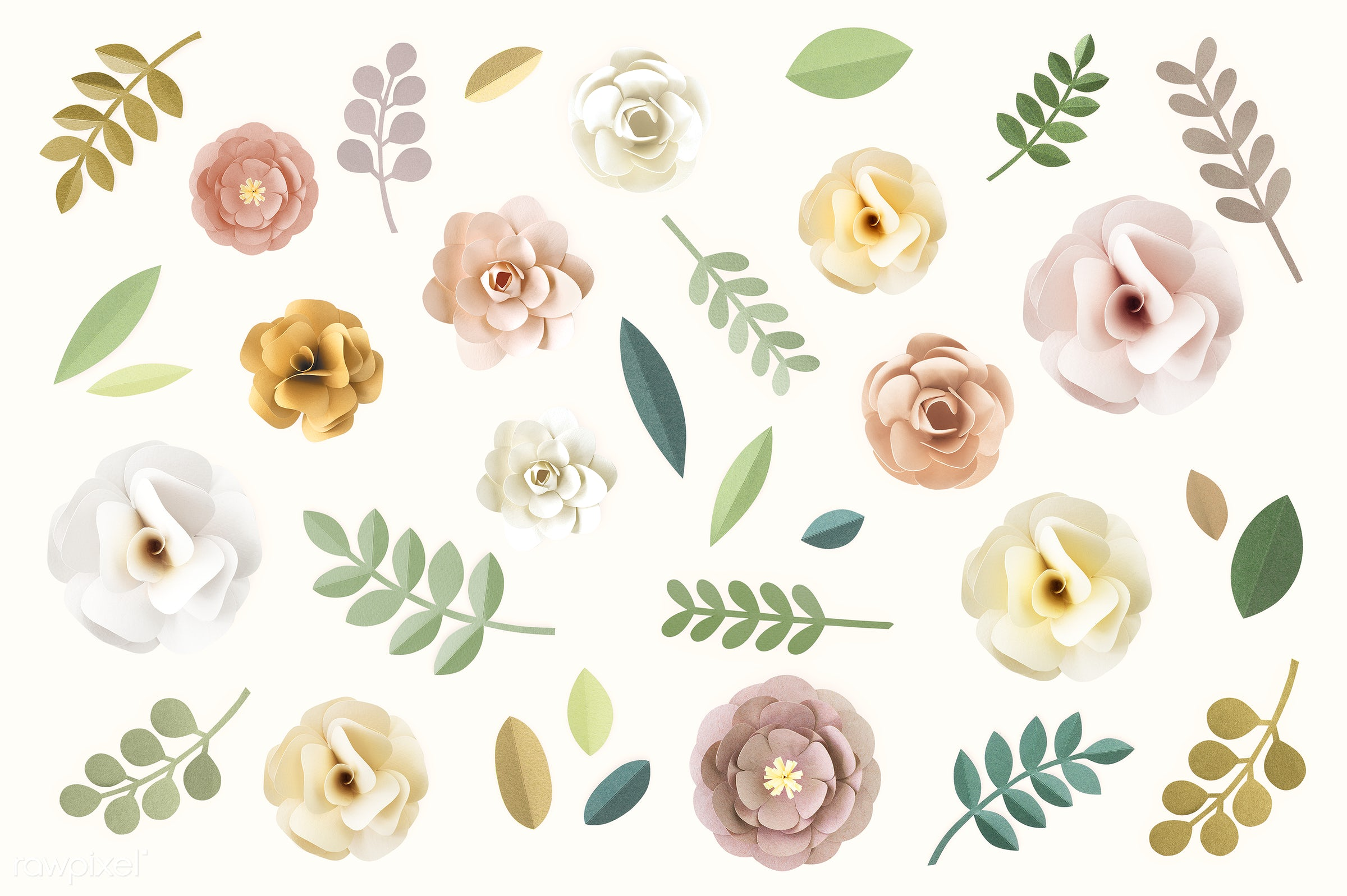 Set of flowers and plants made out of paper - abstract, acacia, art, background, beautiful, blossom, carnation, close-up,...
