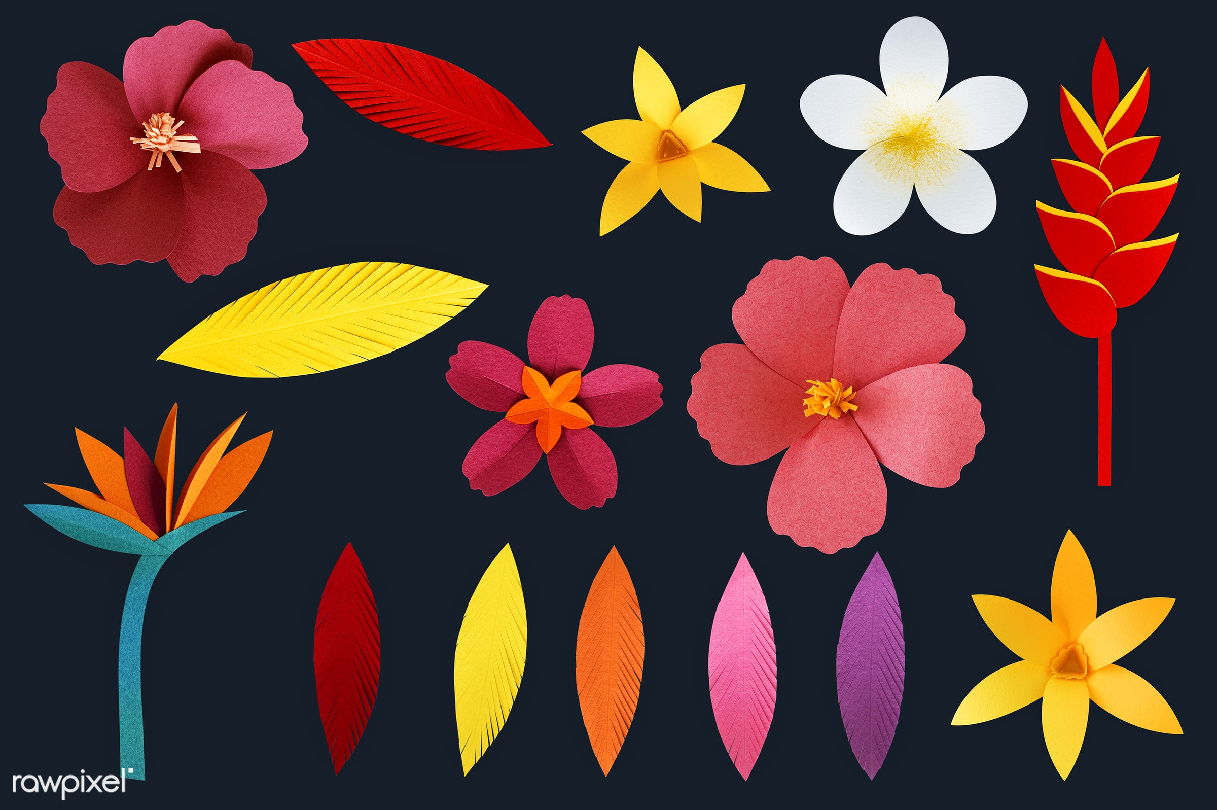 Set Of Flowers And Plants Made Out Of Paper Id 261551