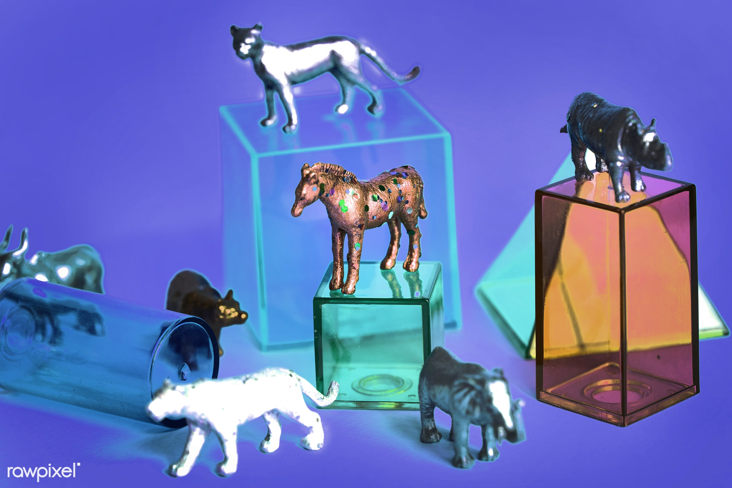 Various animal toy figures with boxes and in a colorful background - childhood, fashion, funky, amusement, animals,...
