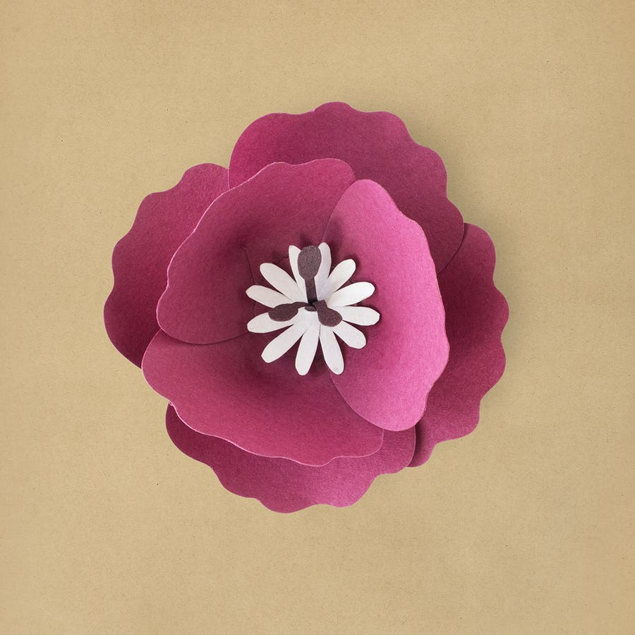 Paper craft flowers pink flower paper craft plants paper paper craft cut out rose mightylinksfo