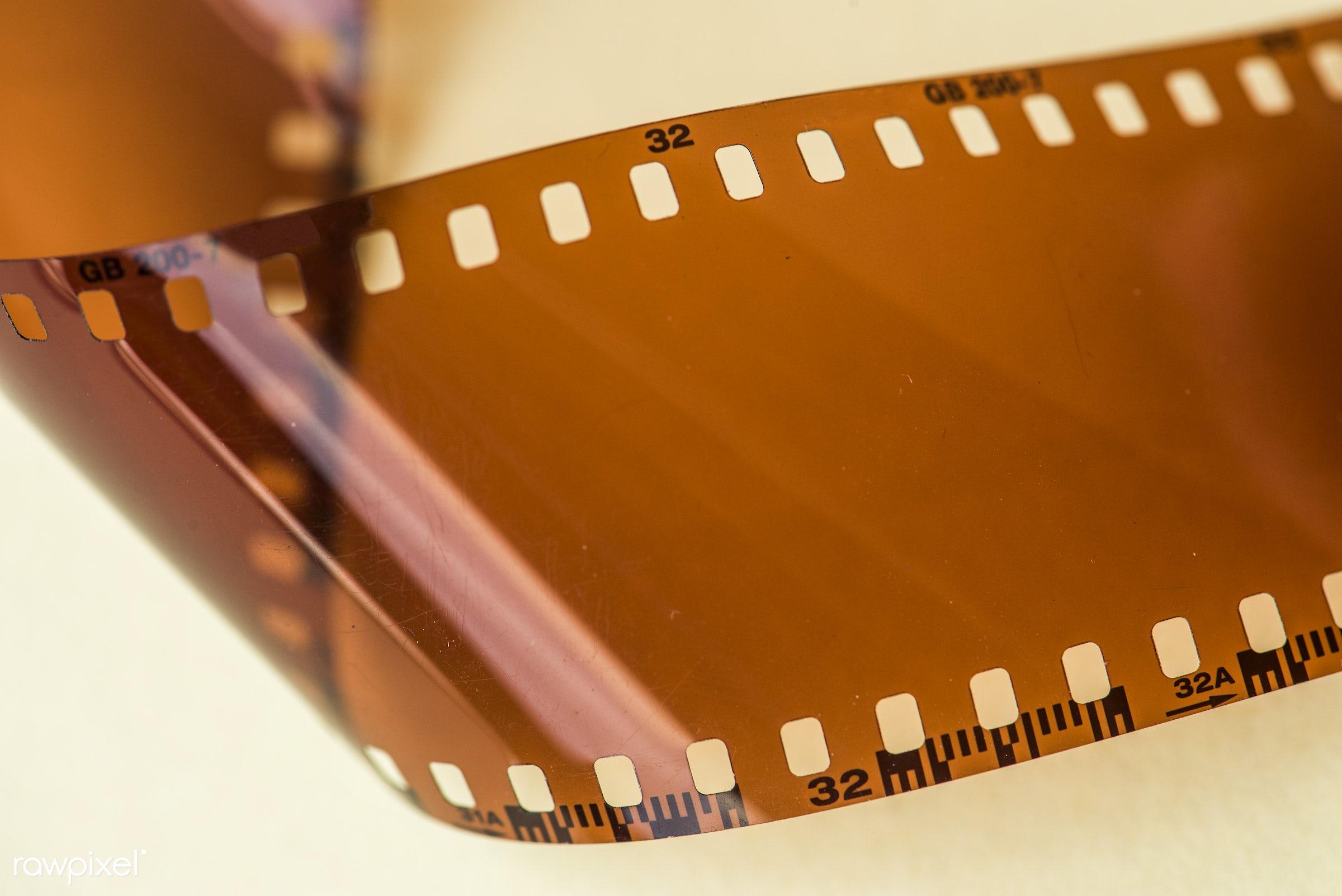 Blank film strip isolated on white background - film strip, mockup, analog, blank, blank space, camera, camera film, classic...