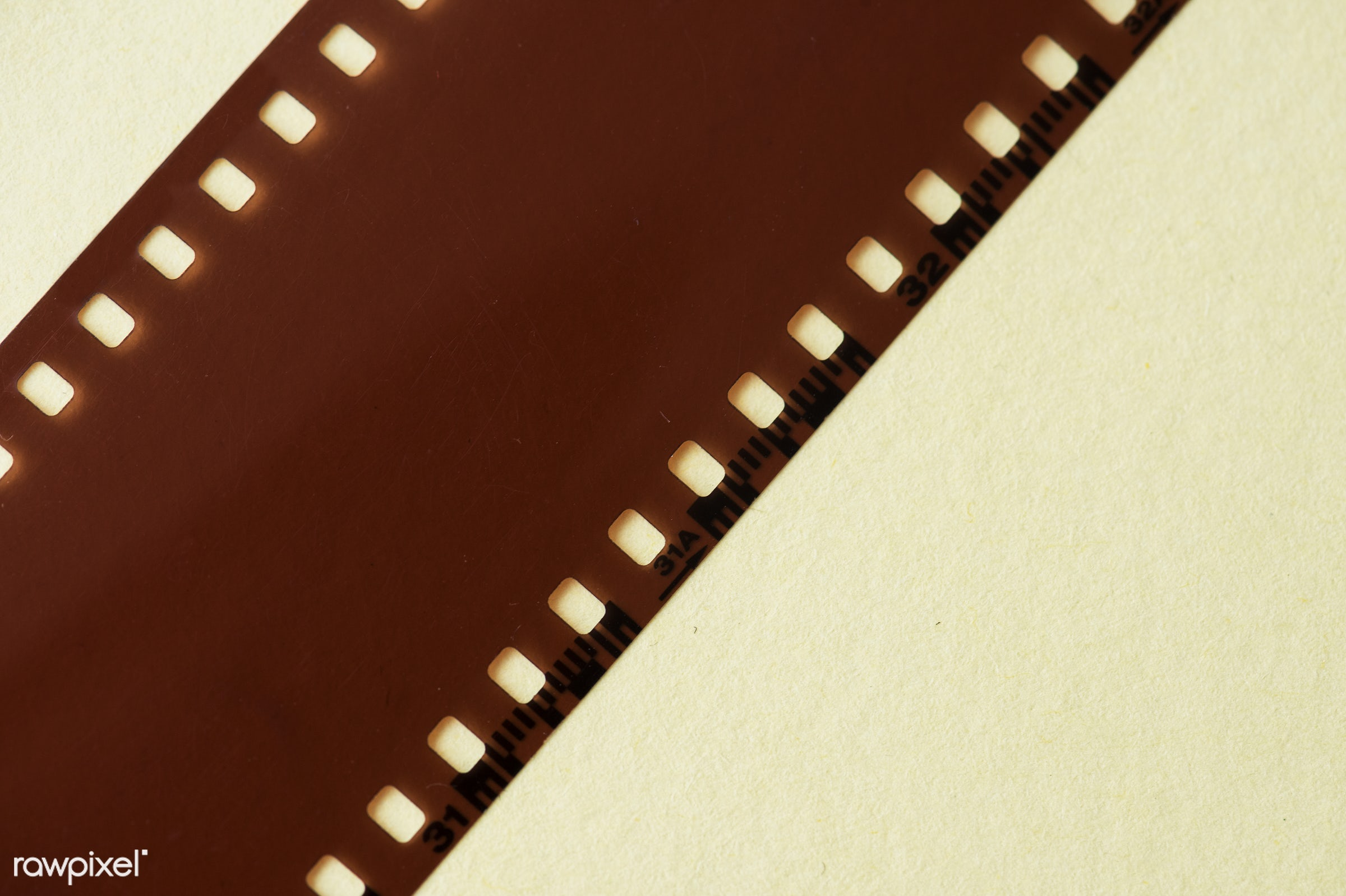 Blank film strip isolated - camera, classic, analog, blank, blank space, camera film, copy space, design space, empty, film...