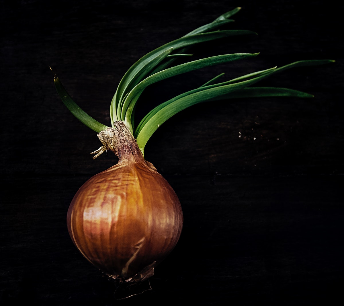 Organic yellow onion on a table