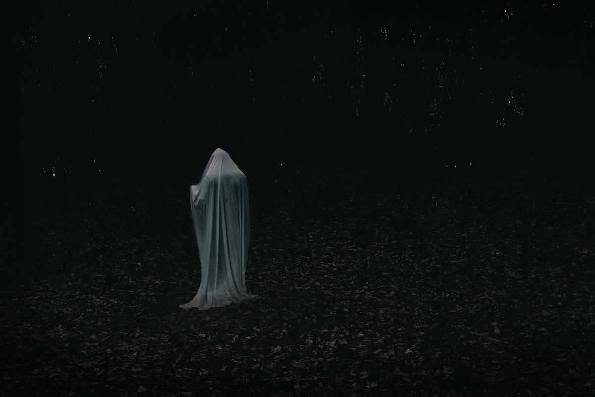 A ghost in a dark forest