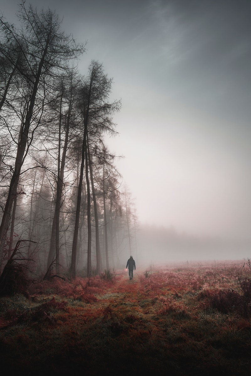 Man walking in a misty woods with a lamp