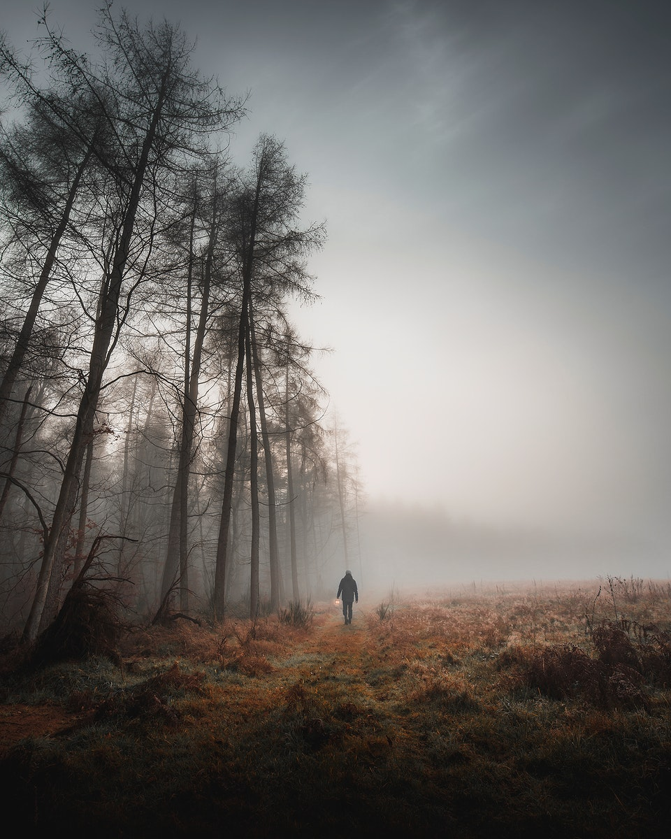 Man walking in the misty woods with a lamp