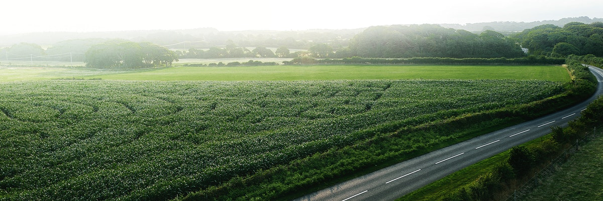 Green maze field on the countryside banner