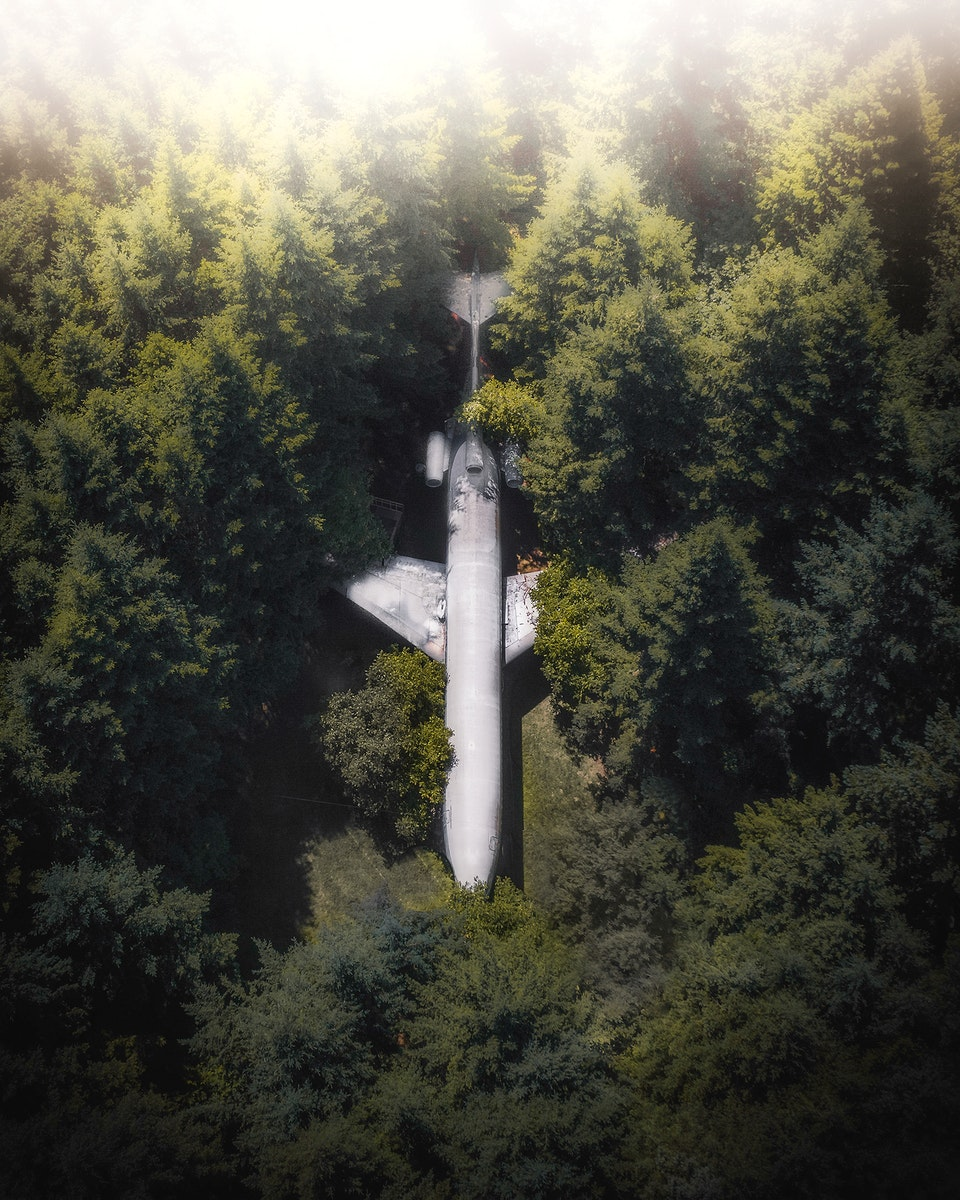 A plane in the woods in Hillsboro, Oregon, USA