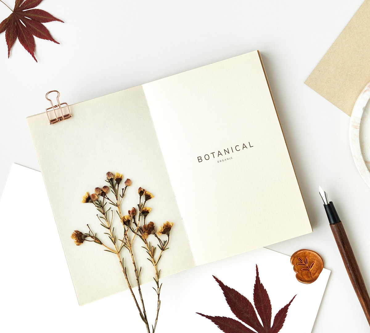 White notebook template mockup with dried plant