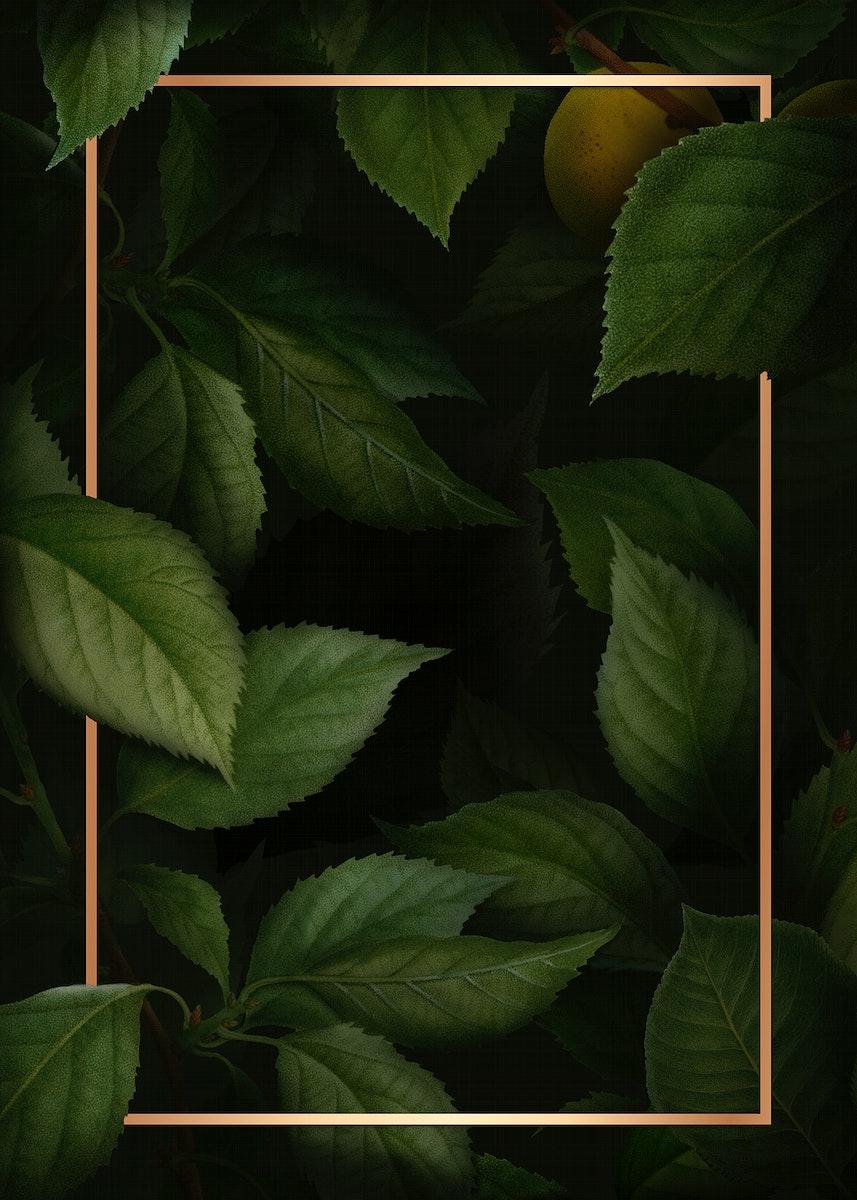 Gold frame on briançon apricot pattern background template illustration