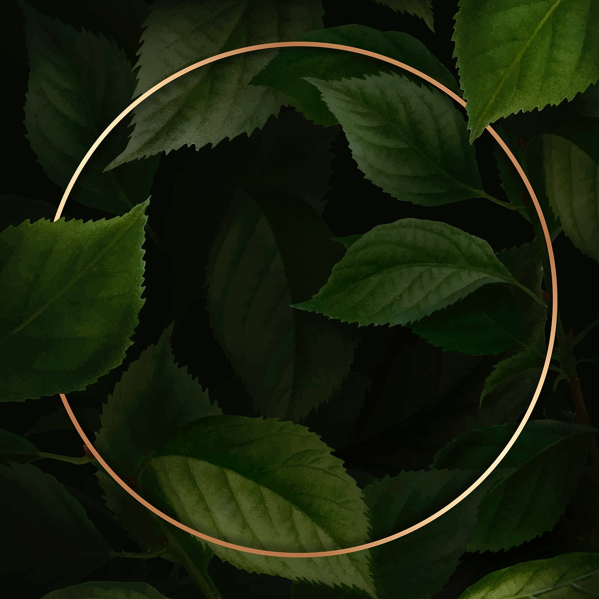 Gold frame on briançon apricot background vector