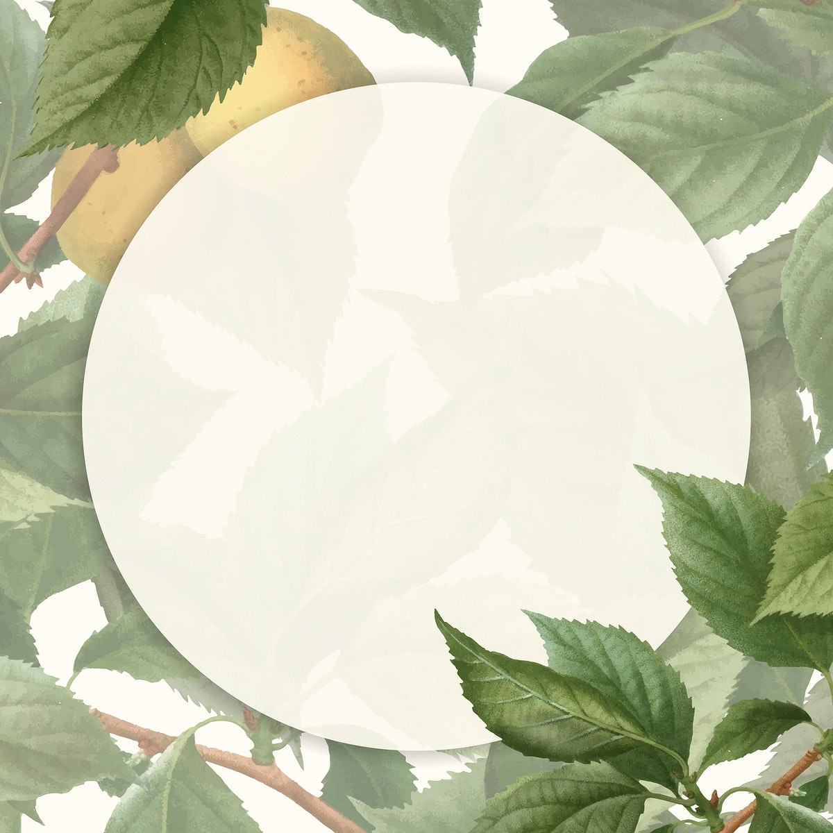 Frame on briançon apricot background vector