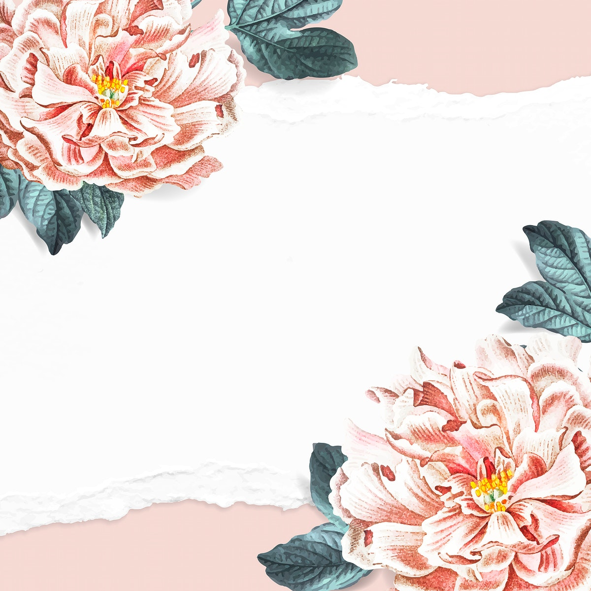 Floral blank peony frame social ads template vector