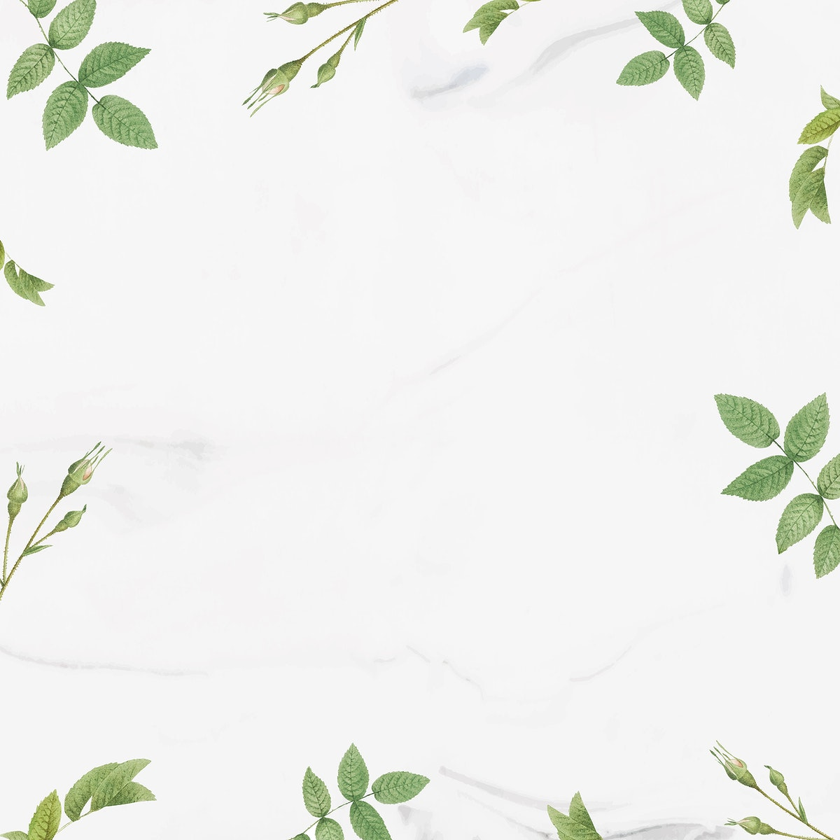 Green foliage pattern frame vector