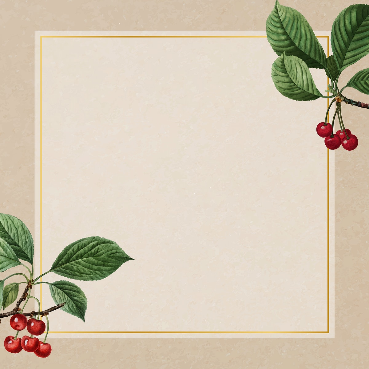 Hand drawn cherry pattern with square gold frame vector